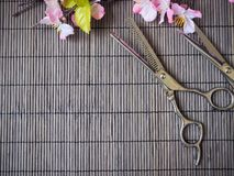 Hair cutting shears Stock Photography