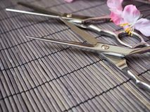 Hair cutting shears Royalty Free Stock Photos