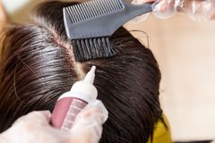 Hair dresser applying chemical hair color dye onto hair roots. Closu-up of hair dresser applying chemical hair color dye onto hair roots in salon royalty free stock image