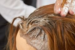 Hair with dye close up. Stock Photo
