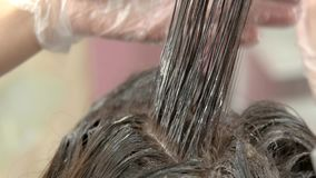 Hair dying macro. Hands of beautician with comb stock footage