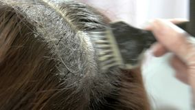Hair dying process close up. Hand, brush and hair dye. Hair restore products stock footage