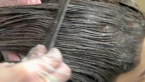 Hair dying process, macro. Hands of beautician and hair stock video