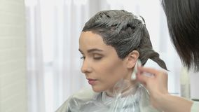 Hair dying in salon. Beautician using cotton pad stock video footage