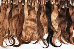 Hair extension equipment of natural hair. Hair samples of different colors Royalty Free Stock Images