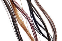 Hair extensions. Of different colors on a white background Royalty Free Stock Photos