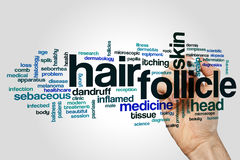 Hair follicle word cloud Royalty Free Stock Photo