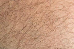Hair. On foot with toes and leg Stock Photo