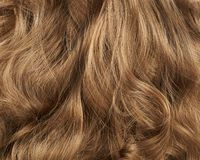 Hair fragment as a background composition Stock Image