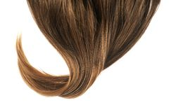 Hair fragment over the white Royalty Free Stock Images