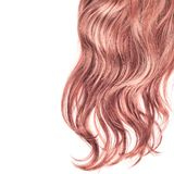 Hair fragment over the white Royalty Free Stock Photos