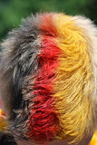 Hair with german colors Royalty Free Stock Photography