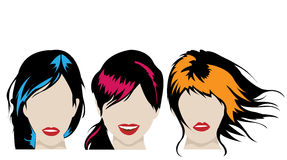 Hair Icon Set Royalty Free Stock Photos