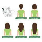 Hair length chart back view Royalty Free Stock Photo