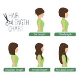 Hair length chart side view Stock Photos