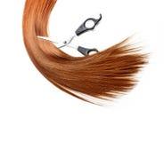 Hair lock cuttung Royalty Free Stock Image