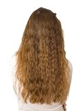 Hair long back 1 Stock Images