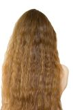 Hair long back Naked Stock Images