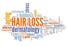Balding. Hair loss - aging and balding problem. Word cloud sign Royalty Free Stock Images