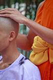 Hair on lotus leaves tray from ordination of Thai monk - Stock I Royalty Free Stock Photos