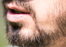 Hair of a man with a beard and mustache Royalty Free Stock Image