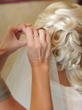Hair Master at Work Royalty Free Stock Photos