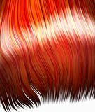 Hair orange Royalty Free Stock Photos