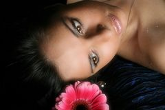 Hair pink flowers Stock Photography