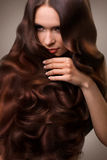 Hair. Portrait of Beautiful Woman with Long Wavy Hair. High qual. Ity image Stock Images