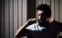 Hair Preparation is just for the dashing chap. Bearded stylish barber shop client. Bearded client visiting barber shop stock images