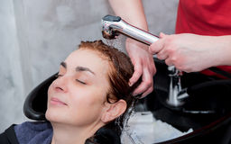 Hair rinsing. A hairdresser rinsing hair of a woman after shampooing. Selective focus Stock Photo