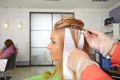 Hair salon. Coloring. Stock Images