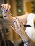 Hair Salon situation Royalty Free Stock Image