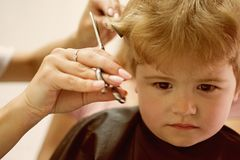 Hair salon that specializes in toddlers. Little boy with blond hair at hairdresser. Small child in hairdressing salon. Cute boys hairstyle. Hair salon for kids stock photography