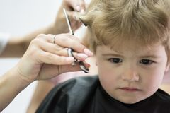 Hair salon that specializes in toddlers. Little boy with blond hair at hairdresser. Small child in hairdressing salon. Cute boys hairstyle. Hair salon for kids stock images