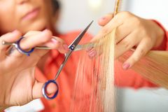 Hair salon. Women`s haircut. Cutting. stock photos