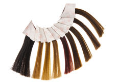 Hair samples Stock Photography