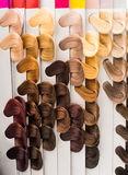 Hair samples of different colors Stock Image