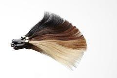 Hair samples fan Royalty Free Stock Image