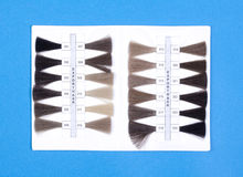 Hair Samples For Production of  Wigs Royalty Free Stock Images