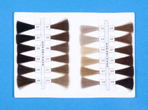 Hair Samples For Production of  Wigs Stock Photo