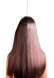 2 in 1 hair straightening before and after. Girl with long straight brown hair. rear view. hair straightening, before and after. Image of the two halves Stock Photography