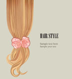 Hair style background. Vector set poster or visit card. Stock Photos