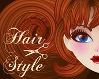 Hair Style Beauty Illustration Royalty Free Stock Photo