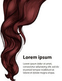 Hair style and hair care design template. Elegant hair style and hair care design template Royalty Free Illustration