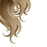 Hair style and haircare design template Stock Photography