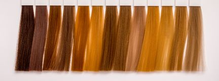 Hair styles of various shades for  right choice of color when co. Loring hair Royalty Free Stock Photography
