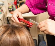 Hair styling in a beauty salon Royalty Free Stock Image