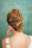 Hair Styling Rear View, Brown color Iroquois hair style. Royalty Free Stock Photography