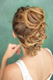 Hair Styling Rear View, Brown color Iroquois hair style. Royalty Free Stock Images